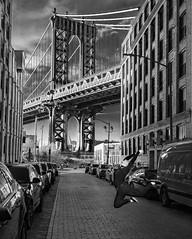 Jumping For Joy (GR Smith) Tags: streetphotography newyorkcity brooklyn manhattanbridge diamondclassphotographer
