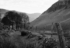 Somewhere in Wales (joshdgeorge7) Tags: 35mm black fence fields film grass ilford mountains path pentax post rocks scree trees wales walking welsh white