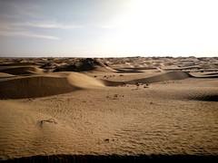 Por la cuenca del Deriya. Desierto de Taklamakán. China (escandio) Tags: dunas taklamakan keriya china2018 china 2018 2 xinqian