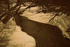 Creek (Dave Linscheid) Tags: water stream winter texture textured picmonkey watonwancounty mn minnesota usa tree snow