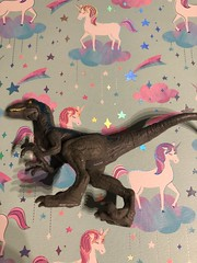 Blue figure #blue #favorite #jw #jurassicworld #cute #raptor #dinosaur (direngrey037) Tags: blue favorite jw jurassicworld cute raptor dinosaur