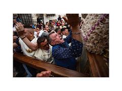 800° Anniversario Maria SS della Mercede (Lorenzo Gatto Fotografia) Tags: lorenzogattophotographer lorenzogattofotografia lorenzogatto processionedellamercede processione confraternitadellamercede street streetphotography sicily sicilia palermo devoti devot mercatodelcapopalermo