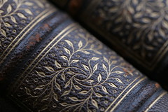 Embellishment E (Patrick JC) Tags: macromondays vowel embellishment leaves book spine texture antique old