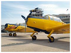 Nord 3202-B Master - F-AZND  & North American T-6G Texan (F-AZBQ) (Aerofossile2012) Tags: nord 3202b master faznd avion aircraft aviation meeting airshow lebourget aéroclubdefrance 2018 northamerican t6g texan fazbq