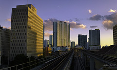 The city, the tram lines and the afternoon. (Aglez the city guy ☺) Tags: architecture afternoon city urbanexploration colors metromuver downtownmiami building outdoors transportation perspective exploration walking walkingaround cityofmiami