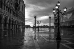 Early morning storm in Venice (photofitzp) Tags: bw blackandwhite rain reflections stmarks venice wet ka3apka italy water