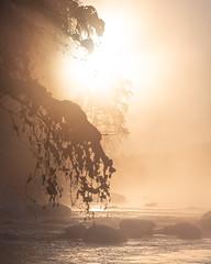 Light (laurilehtophotography) Tags: suomi finland konnekoski konnevesi talvi auringonnousu maisema luonto winter winterwonderland amazing earth europe outdoor cold morning light sunrise landscape nature nikon d750 nikkor 200500mm