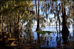 Sit With Me (gatorgalpics) Tags: explore107 newnanslake