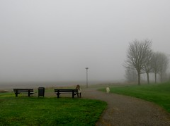 's Heerenhoek (Omroep Zeeland) Tags: hond uitlaten het park de mist