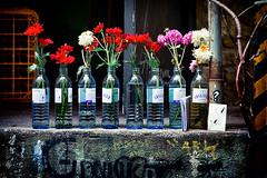 flower parade (laird.lothar) Tags: flowers street streetphotography backyard arban bottles still city berlin germany hackesche höfe poor