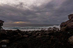 Hawaii 2018-8 (skot917) Tags: 2018 afs1635mmf4 anjisbeachhouse captaincook d810 nikon pebblesbeach bigisland hawaii