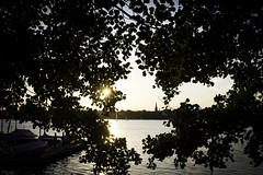 Alster Lakes 1 (t.leighpics) Tags: germany deutschland hamburg alster lake sunset ausenalster