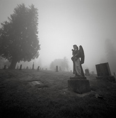 In a Cemetery, Portland (austin granger) Tags: cemetery portland pinhole film woodbläk death angel statuary graves fog oregon square