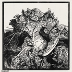 Three slugs on a cabbage by Julie de Graag (1877-1924). Original from the Rijks Museum. Digitally enhanced by rawpixel. thumbnail