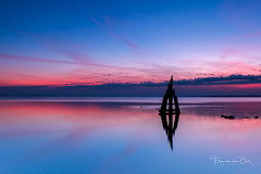 Tranquillo (Ellen van den Doel) Tags: wood blauw color zonsopkomst water reflection reflectie harbor outdoor ellenvandendoel sunrise september netherlands holland roze blue pole den grevelingen kleur pink arendshoofd osse sky nederland hout 2016 paal haven brouwershaven zeeland nl