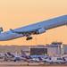 Western Global MD-11F (ATL