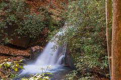 DSC01228 (PsycDocF) Tags: chattahoocheeoconeenationalforests fallcolors autumn waterfall ravensclifffalls northgeorgia
