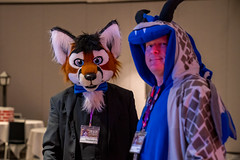 DSC08911 (Kory / Leo Nardo) Tags: pacanthro pawcon paw con pac anthro convention fur furry fursuit suiting mascot sona fursona san jose doubletree hotel california dance party deck animals costuming pupleo 2018