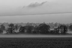 15.11.18 (StevieLad62) Tags: fujix30 fuji blackandwhite monochrome mistymorning morning trees landscape derbyshiredales dales derbyshire fields crop