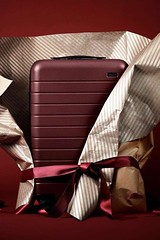 Birthday Gifts : Suitcase Gift Idea For Travelers #suitcase #travel ★ Amazing gift ideas for wo… (mygiftslist) Tags: gifts