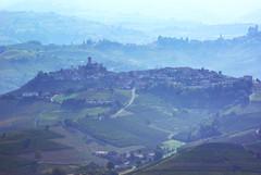 Morra 4 Langhe 18 (zanf89) Tags: lamorra neive alba langhe piemonte colline vino barolo nocciole