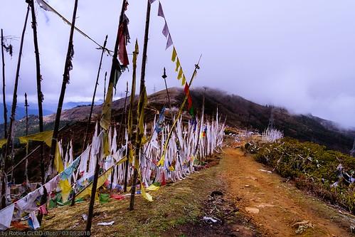 Bondey - Haa Highway: Chele La Pass (3810m)