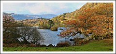 Rydal-water. (stu.bloggs..Dont do Sundays) Tags: rydalwater lake lakeland lakes landscape landscapes colours colourful trees woodland islands mountains fells lakedistrict autumn october 2018 woods