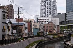 DP3M5688 (bethom33) Tags: sigma dp3merrill dp3 merrill tokyo japan