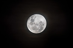 Nearly a Full Moon (Merrillie) Tags: fullmoon astrology planetary night space luna celestial round australia universe sky moon nighttime centralcoast waninggibbous lunar
