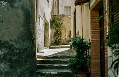Caloveto, Calabria (Postcards from San Francisco) Tags: contaxt2 kodakportra160 film analog caloveto calabria italia