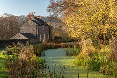Cromford Canal (little mester.) Tags: cromfordcanal crich derbyshire