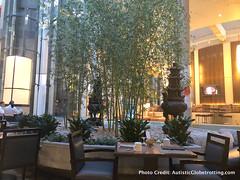 WESTIN BONAVENTURE HOTEL DTLA (Margalit Francus) Tags: westin bonaventure hotel dtla