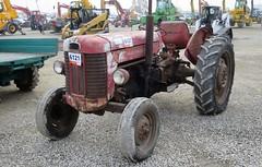 Massey Ferguson MF 65 (samestorici) Tags: trattoredepoca oldtimertraktor tractorfarmvintage tracteurantique trattoristorici oldtractor veicolostorico mf65
