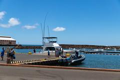 Port Allen boat tour Kauai Hawaii