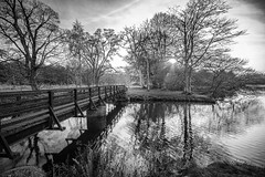 """the bridge over the Burn of Kelly - tranquil light at Haddo House & gardens, Aberdeenshire, Scotland. Fine art black & white. (grumpybaldprof) Tags: bw blackwhite """"blackwhite"""" """"blackandwhite"""" noireetblanc monochrome """"fineart"""" ethereal striking artistic interpretation impressionist stylistic style """"wideangle"""" ultrawide bridge burnofkelly tranquil mood atmosphere """"haddohouse"""" gardens park """"williamadam"""" 1732 georgian gordons aberdeenshire scotland """"georgegordon"""" """"1stearlofaberdeen"""" """"lordchancellor"""" """"maternityhospital"""" methlick ellon tarves house chateau """"marquessofaberdeen"""" """"500years"""" """"palladinstyle"""" """"georgehamiltongordon"""" """"4thearlofaberdeen"""" """"britishprimeminister"""" """"1852–1855"""" """"burnofkelly"""" trees lake loch pond water wood forest refections wetreflections canon 7d """"canon7d"""" sigma 1020 1020mm f456 """"sigma1020mmf456dchsm"""""""