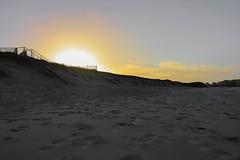 IMG_0364 (Mathieulegall) Tags: brest canonfrance canonm50 meneham kerlouan horse cheval mer paysage soleil finistere bretagne