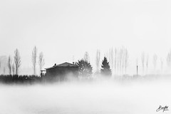 Now I need a place to hide away (frogghyyy) Tags: landscape bw blackandwhite monochrome biancoenero mist fog nebbia snow neve bianco white nature winter house
