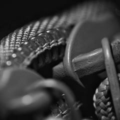 Zip it. (Steve.T.) Tags: macromondays macromonday intendedcontact blackandwhite bnw mono details zip zipper nikon d7200 raynoxdcr250 closeup fastener zippedup