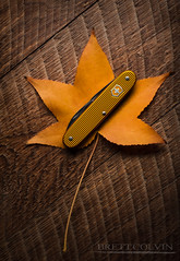 Bugnard Yellow Victorinox Alox Pioneer Rancher (Fly to Water) Tags: victorinox yellow sak swiss army knife multitool multi tool alox pioneer edc every day carry leaf fall professional product photography wood macro rancher bugnard