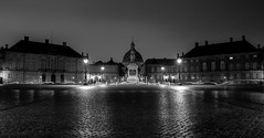 security officer patrolling Amalienborg handling a torch light (CONTROTONO) Tags: awesome arch art architecture beautiful brass bubble building bulge longexposure ceiling controtono drama exploration fresco gallery hall location marble mosaic paint painting palace perspective room school show stained stone stucco supershot texture tourist travel view wallpainting wideangle column construction angel antiquedoor abbey river bw blackandwhite