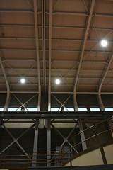 DSC_5217 (sano_rio) Tags: lights ceiling bracing moment frames interior