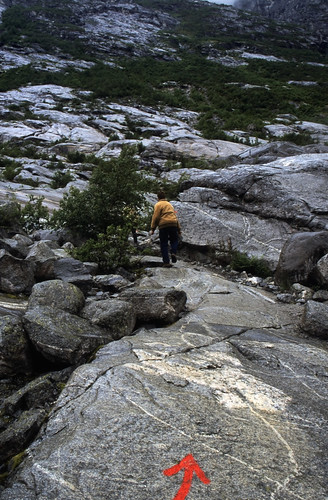 "Norwegen 1998 (236) Nigardsbreen • <a style=""font-size:0.8em;"" href=""http://www.flickr.com/photos/69570948@N04/45823771452/"" target=""_blank"">View on Flickr</a>"