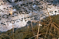 Document of presence (Pomegranate_seeds) Tags: ruins 35mm photography analog roman antiquity seaside croatia pula letters words summer travel vacation