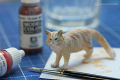 schleich maine coon - after (photos4dreams) Tags: schleich cat ooak toy plastic spielzeug plastik photos4dreams p4d photos4dreamz photo katze repaint custom oneofakind upgrade dolldesigner design mainecoon canoneos5dmark3