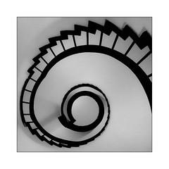 conundrum (Armin Fuchs) Tags: arminfuchs würzburg universityofmusic residenzgebäude circularstairway staircase snail lavillelaplusdangereuse