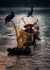 Cormorant Fisherman (Rod Waddington) Tags: china chinese yangshuo li river cormorant fisherman birds bamboo raft water evening landscape fishing net