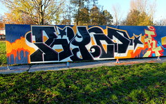 Capelsebrug (oerendhard1) Tags: graffiti streetart urban art rotterdam oerendhard capelsebrug blis