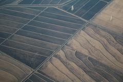 IMG_11808 (mudsharkalex) Tags: california birdseyeview