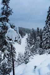 Hellfroze (Cerad_K) Tags: winter finland snow landscape lakes