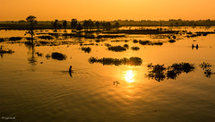 sunset (Laszlo Horvath.) Tags: nikond7100 sigma1835mmf18art amarapura mandalay myanmar burma sunset orange lights lake river water fishing adventure happyplanet